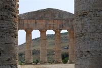 il tempio - 5 agosto 2012 - Foto di Nicolò Pecoraro  - Segesta (1162 clic)
