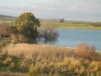Lago Arancio - 26 febbraio 2012  - Sambuca di sicilia (1424 clic)