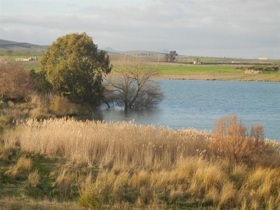 Lago Arancio - SAMBUCA DI SICILIA - inserita il 14-Apr-14