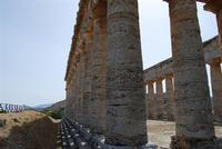 il tempio - 5 agosto 2012 - Foto di Nicolò Pecoraro  - Segesta (1148 clic)