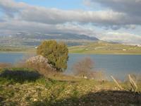 Lago Arancio - 26 febbraio 2012  - Sambuca di sicilia (1965 clic)