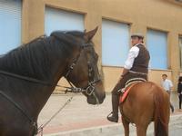SPERONE - sfilata di cavalli - festa San Giuseppe Lavoratore - 29 aprile 2012  - Custonaci (476 clic)