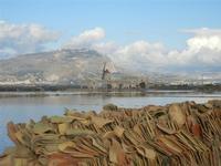 Museo del Sale e Monte Erice - Oasi Naturale Orientata Saline di Trapani e Paceco - 15 gennaio 2012  - Nubia (585 clic)