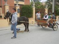 SPERONE - sfilata di cavalli - festa San Giuseppe Lavoratore - 29 aprile 2012  - Custonaci (431 clic)