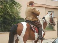 SPERONE - sfilata di cavalli - festa San Giuseppe Lavoratore - 29 aprile 2012  - Custonaci (460 clic)