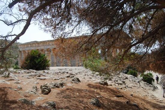 il tempio - SEGESTA - inserita il 08-Jun-15