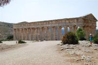 il tempio - 5 agosto 2012 - Foto di Nicolò Pecoraro  - Segesta (1219 clic)
