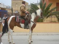 SPERONE - sfilata di cavalli - festa San Giuseppe Lavoratore - 29 aprile 2012  - Custonaci (465 clic)