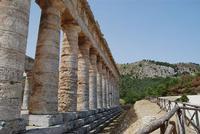 il tempio - 5 agosto 2012 - Foto di Nicolò Pecoraro  - Segesta (1128 clic)