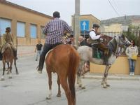 SPERONE - sfilata di cavalli - festa San Giuseppe Lavoratore - 29 aprile 2012  - Custonaci (436 clic)