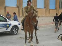 SPERONE - sfilata di cavalli - festa San Giuseppe Lavoratore - 29 aprile 2012  - Custonaci (440 clic)