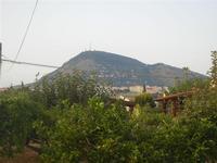 Monte Bonifato - 5 agosto 2012  - Alcamo (378 clic)