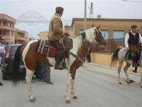SPERONE - sfilata di cavalli - festa San Giuseppe Lavoratore - 29 aprile 2012  - Custonaci (572 clic)