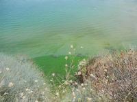 periferia est della città - vista sul mare - 11 luglio 2012  - Castellammare del golfo (210 clic)