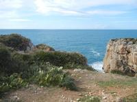 Riserva Naturale Orientata Capo Rama - Cala Porro - 15 aprile 2012  - Terrasini (920 clic)