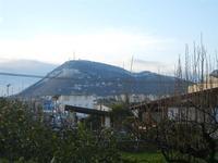 una spruzzata di neve sul Monte Bonifato - 14 febbraio 2012  - Alcamo (1053 clic)