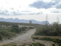 Riserva Naturale Orientata Capo Rama  e torre di avvistamento - 15 aprile 2012  - Terrasini (1060 clic)