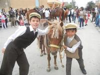 SPERONE - sfilata di cavalli - festa San Giuseppe Lavoratore - 29 aprile 2012  - Custonaci (470 clic)