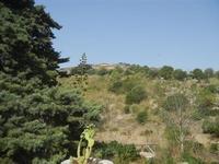 area archeologica e tempio - 5 agosto 2012  - Segesta (662 clic)