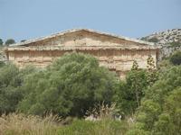 il tempio - 5 agosto 2012  - Segesta (534 clic)