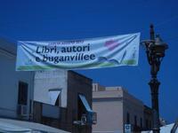 striscione Libri, autori e buganvillee 2012 in via Savoia - 23 agosto 2012  - San vito lo capo (328 clic)