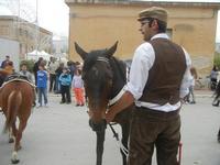SPERONE - sfilata di cavalli - festa San Giuseppe Lavoratore - 29 aprile 2012  - Custonaci (450 clic)