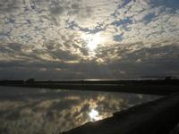 tramonto - Oasi Naturale Orientata Saline di Trapani e Paceco - 15 gennaio 2012  - Nubia (474 clic)