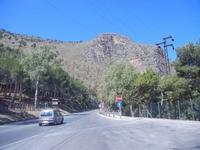 pineta e monte Inici dal Belvedere - 27 agosto 2012  - Castellammare del golfo (1516 clic)
