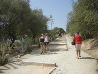 salita al tempio - 5 agosto 2012  - Segesta (519 clic)