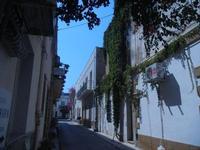 Via V. Flores - 23 agosto 2012  - San vito lo capo (291 clic)