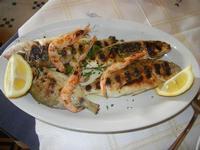 grigliata mista di pesce - saraghetto, snope e gamberetti - La Vela - 26 febbraio 2012  - Sciacca (1904 clic)