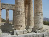 il tempio - 5 agosto 2012  - Segesta (507 clic)