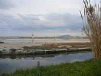 Saline, mulini a vento e Monte Erice - 29 gennaio 2012  - Marsala (445 clic)