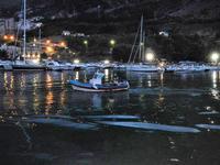 panorama porto - 19 settembre 2012  - Castellammare del golfo (295 clic)