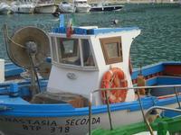 al porto  - 4 giugno 2012  - Castellammare del golfo (337 clic)
