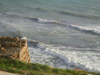 onde - panorama dal Belvedere - 8 gennaio 2012  - Marinella di selinunte (864 clic)