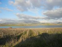 Lago Arancio - 26 febbraio 2012  - Sambuca di sicilia (981 clic)