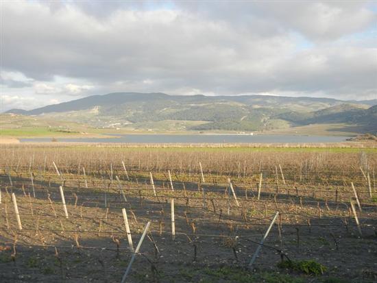Lago Arancio - SAMBUCA DI SICILIA - inserita il 18-Apr-14