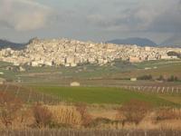 panorama campi e città - 26 febbraio 2012  - Sambuca di sicilia (657 clic)