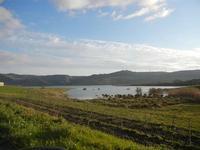 Lago Arancio - 26 febbraio 2012  - Sambuca di sicilia (1931 clic)