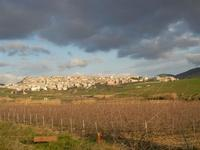 panorama campi e città - 26 febbraio 2012  - Sambuca di sicilia (1426 clic)