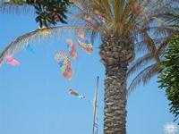 4° Festival Internazionale degli Aquiloni - 24 maggio 2012  - San vito lo capo (312 clic)