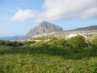 panorama fino al Monte Cofano - 4 marzo 2012  - Custonaci (823 clic)