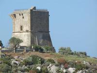 torre di avvistamento - 6 maggio 2012  - Scopello (817 clic)