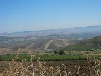 panorama agreste a sud del Monte Bonifato - 15 agosto 2012  - Alcamo (248 clic)