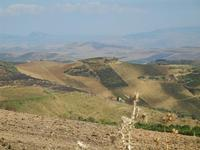 panorama agreste a sud del Monte Bonifato - 15 agosto 2012  - Alcamo (246 clic)