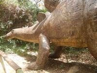 BIOPARCO di Sicilia - dinosauri - 17 luglio 2012  - Villagrazia di carini (304 clic)