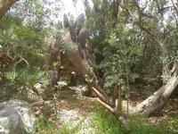 BIOPARCO di Sicilia - dinosauri - 17 luglio 2012  - Villagrazia di carini (268 clic)