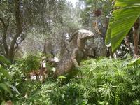 BIOPARCO di Sicilia - dinosauri - 17 luglio 2012  - Villagrazia di carini (340 clic)