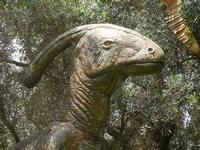 BIOPARCO di Sicilia - dinosauri - 17 luglio 2012  - Villagrazia di carini (299 clic)